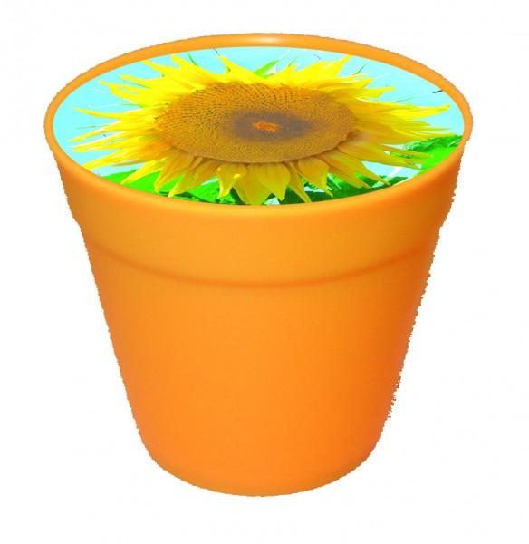 Business-Töpfchen Sonne, Zwergsonnenblume, 1-4 c Digitaldruck inklusive