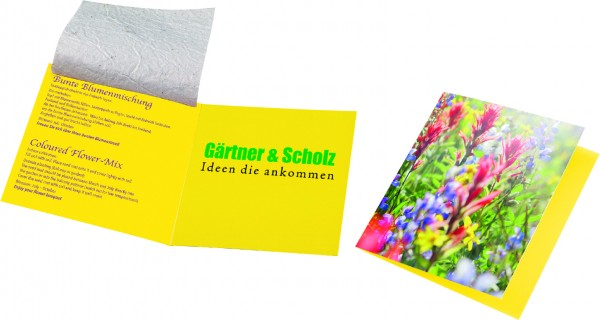 Saatteppich Klappkärtchen, bunte Blumenmischung, 1-4 c Digitaldruck inklusive