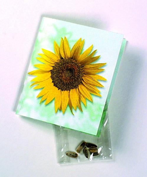 Klappkärtchen Sonne, Zwergsonnenblume, 1-4 c Digitaldruck inklusive