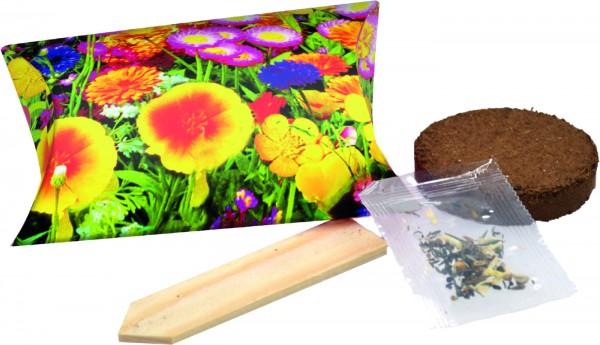 Ausverkauft - Wachstums-Päckchen, bunte Blumenmischung, 1-4 c Digitaldruck inklusive