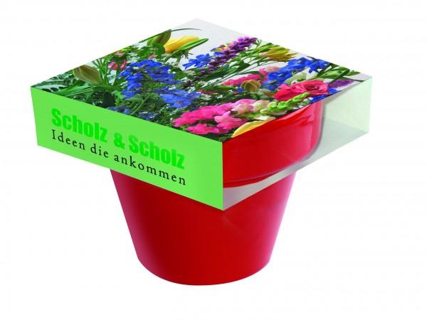 Tontopf Colour Bunte Blumenwelt, bunte Blumenmischung, 1-4 c Digitaldruck inklusive