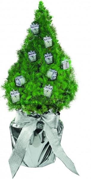 Geschenke-Bäumchen 35-45 cm, in Einzelkartonage - Individualisierung: Anhängekärtchen