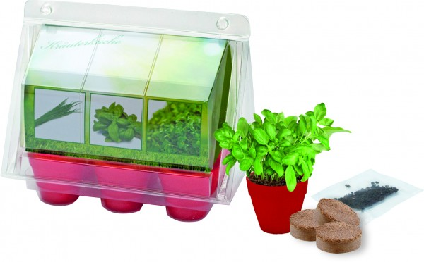 Greenhouse Kräuterküche, Basilikum, Kresse, Zitronenmelisse, 1-4 c Digitaldruck inkl. - Werbeaufdruc