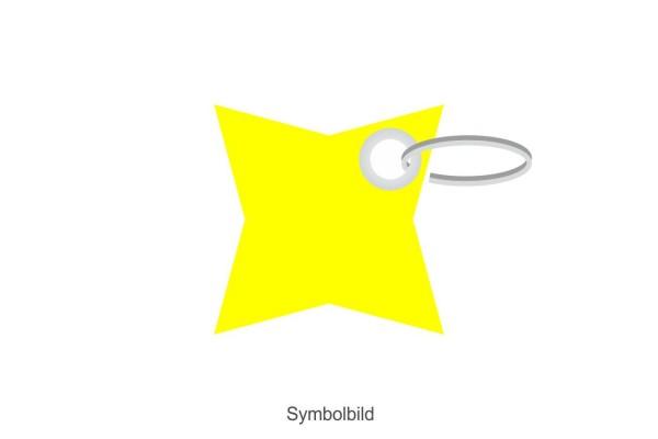 Filz Schlüsselanhänger - Stern - 4 Ecken - optional mit Aufdruck / Schlüsselring / Werbekarte