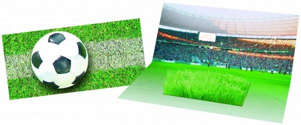 Mini-Arena Karte, Fußballfeld (ohne Kuvert), Zimmerrasen, 1-4 c Digitaldruck inklusive