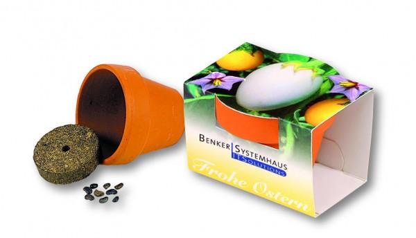 Tontöpfchen Frohe Ostern, Eierbaumsamen, 1-4 c Digitaldruck inklusive