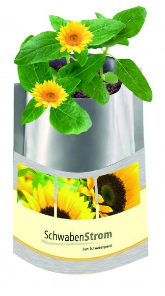 Plant Bag Sonne, Zwergsonnenblume, 1-4 c Digitaldruck inklusive