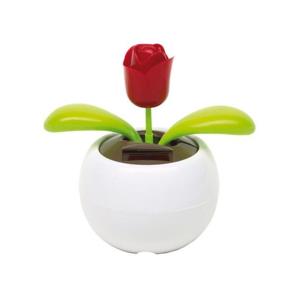 Solarblume WAVING ROSE in weiß / Waving rose