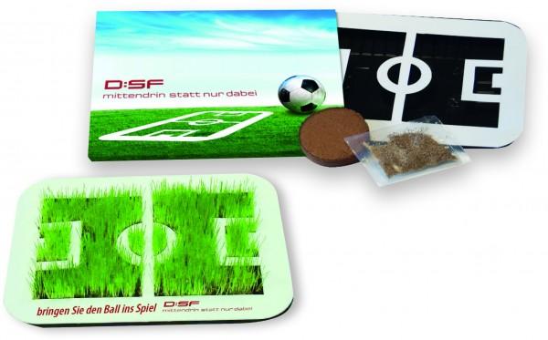 Wachsende Fußball-Arena, Zimmerrasen, 1-4 c Digitaldruck inklusive