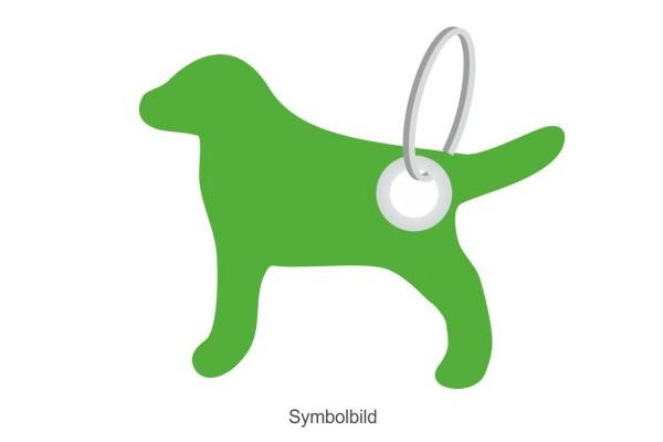 Filz Schlüsselanhänger - Hund - optional mit Aufdruck / Schlüsselring / Werbekarte