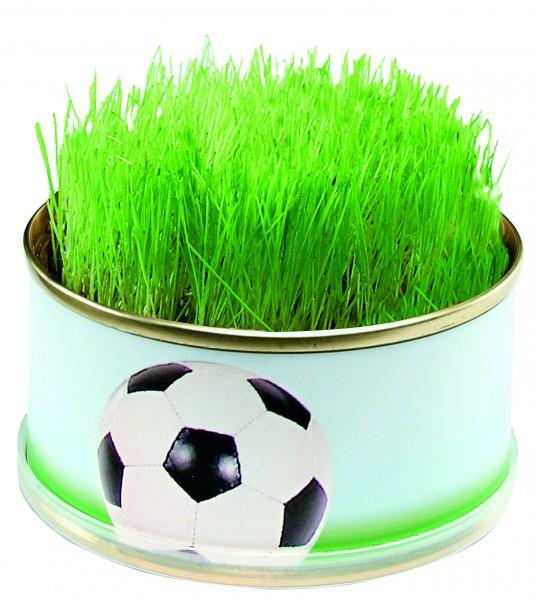 Zimmerarena Mini Garten Fußball, Ø 73 x 38 mm, 1-4 c Digitaldruck inklusive