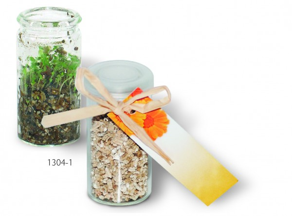 Mini-Glasshouse, Ringelblume, 1-4 c Digitaldruck inklusive