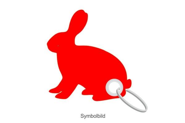 Filz Schlüsselanhänger - Hase sitzend - optional mit Aufdruck / Schlüsselring / Werbekarte