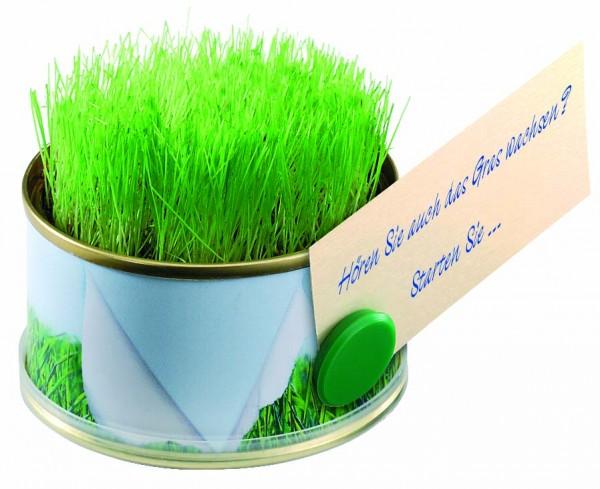 Mini Garten Gras mit Magnet, Ø 73 x 38 mm, Zimmerrasen, 1-4 c Digitaldruck inklusive