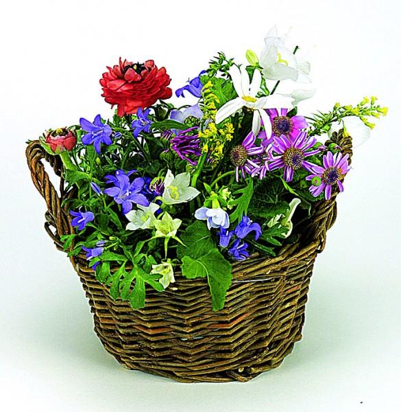 Weiden Körbchen blühendes Wachstum, bunte Blumenmischung, 1-4 c Digitaldruck inkl. - Werbeaufdruck: