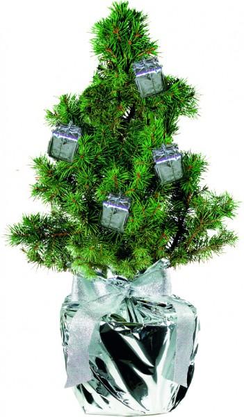Geschenke-Bäumchen 20-30 cm, in Einzelkartonage - Individualisierung: Anhängekärtchen