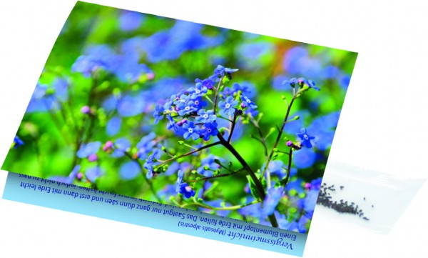 Klappkärtchen Vergissmeinnicht, 90 x 60 mm, Vergissmeinnicht, 1-4 c Digitaldruck inkl. - Werbeaufdru