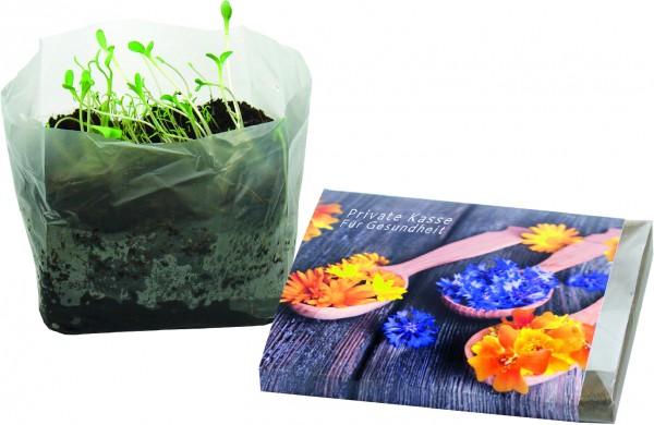 Wachstum im Quadrat Blütengenuss, 1-4 c Digitaldruck inklusive
