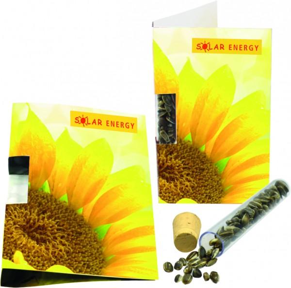 Klappkärtchen Sunshine, Zwergsonnenblume, 1-4 c Digitaldruck inklusive