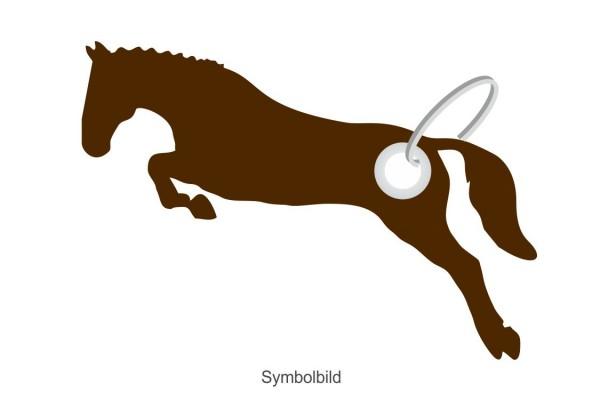 Filz Schlüsselanhänger - Pferd - Springen - optional mit Aufdruck / Schlüsselring / Werbekarte