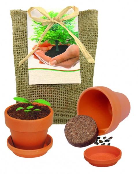 Pflanze Deinen Baum kleines Natur-Säckchen, Robinie, 1-4 c Digitaldruck inklusive