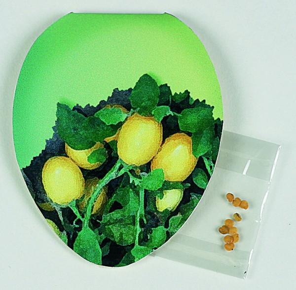 Klappkärtchen Ei, Eierbaumsamen, 1-4 c Digitaldruck inklusive